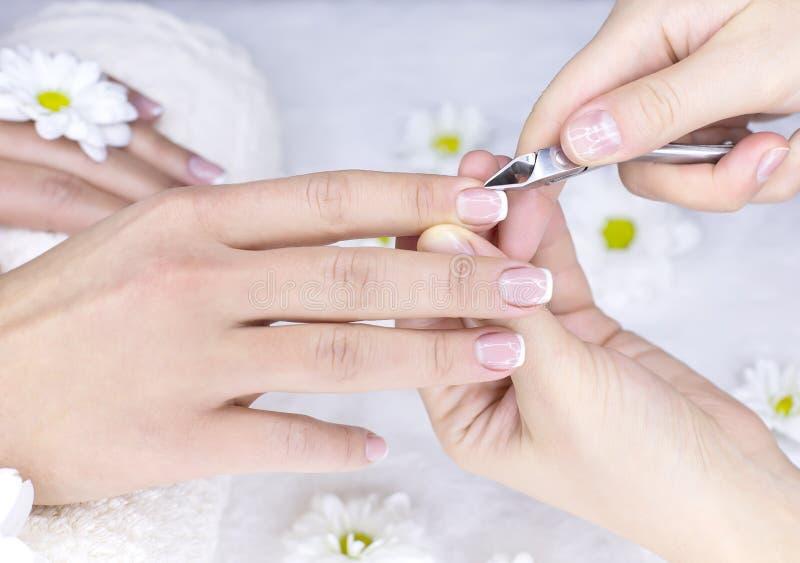 Franse manicure voor wijfje stock foto's