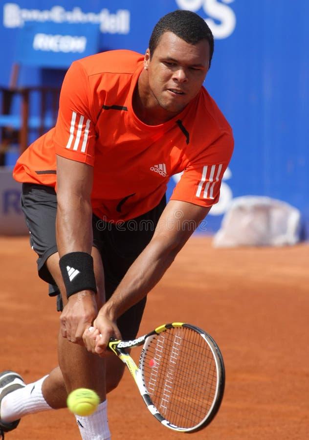 Franse PB-Wilfried Tsonga royalty-vrije stock afbeelding