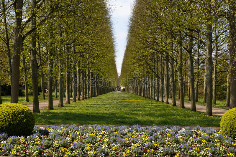 Franse tuin in celle stock foto afbeelding bestaande uit for Franse tuin