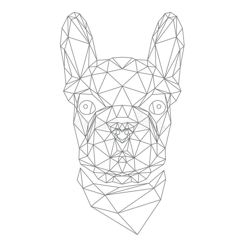 Fransk bulldogg, djurt huvud royaltyfri illustrationer