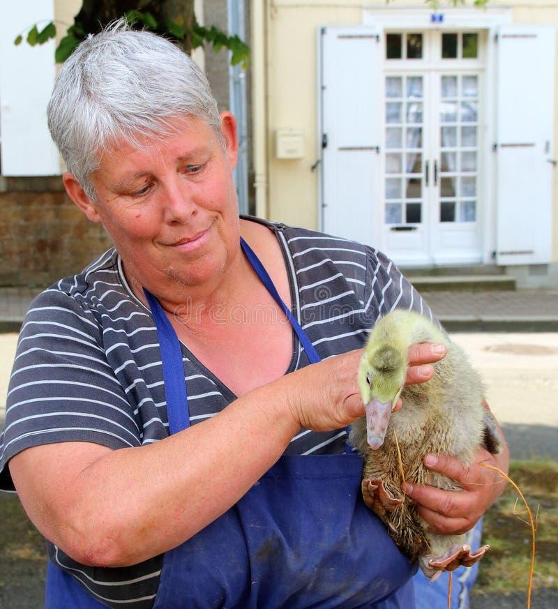 Fransk dam som säljer höns på den lokala marknaden arkivfoton