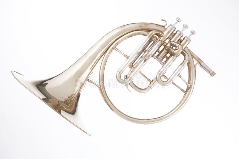 fransk horn isolerad peckhornwhite arkivfoto