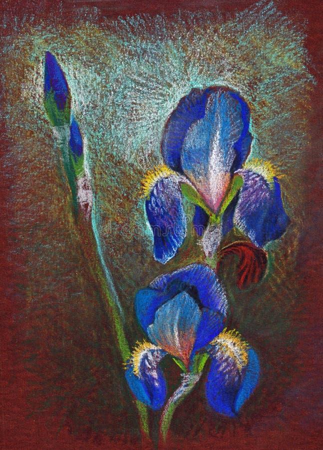 Fransk lilja arkivbild