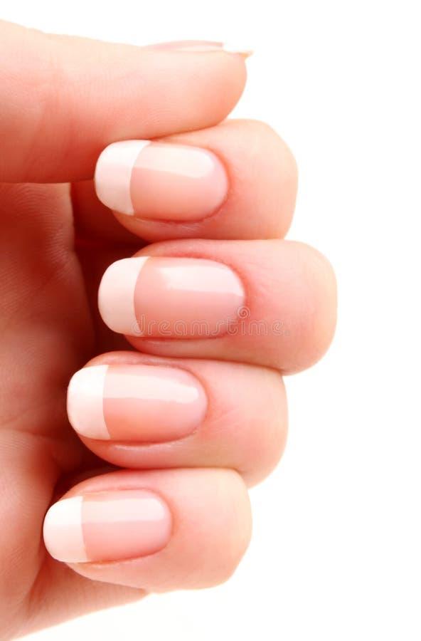 fransk manicure arkivfoto