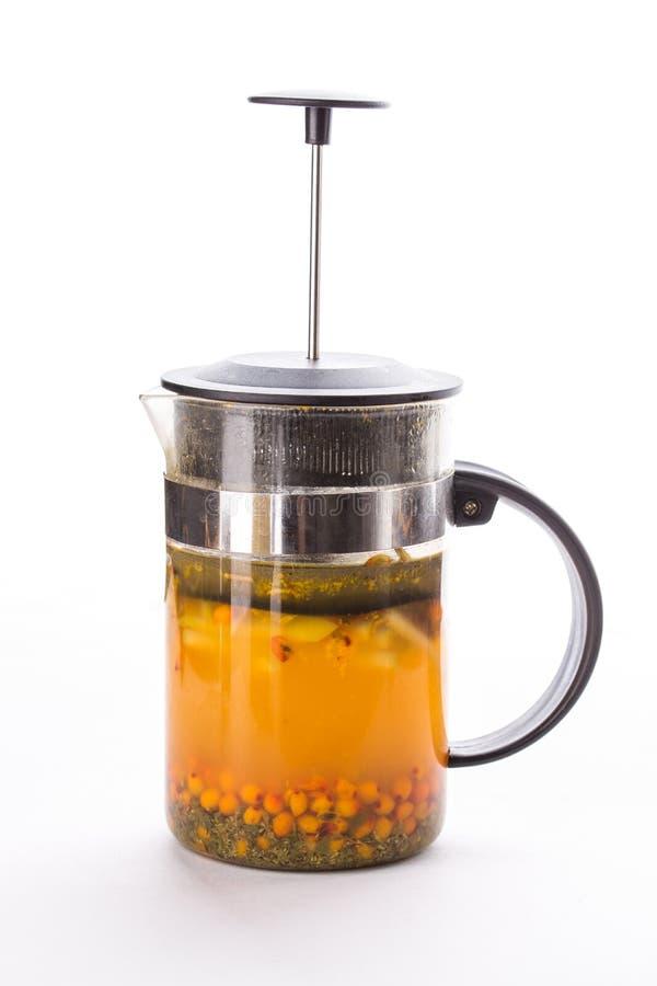Fransk press för tekanna med grönt te och havsbuckthornen som isoleras på vit bakgrund arkivfoto