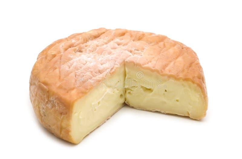 fransk skiva för ost royaltyfri foto