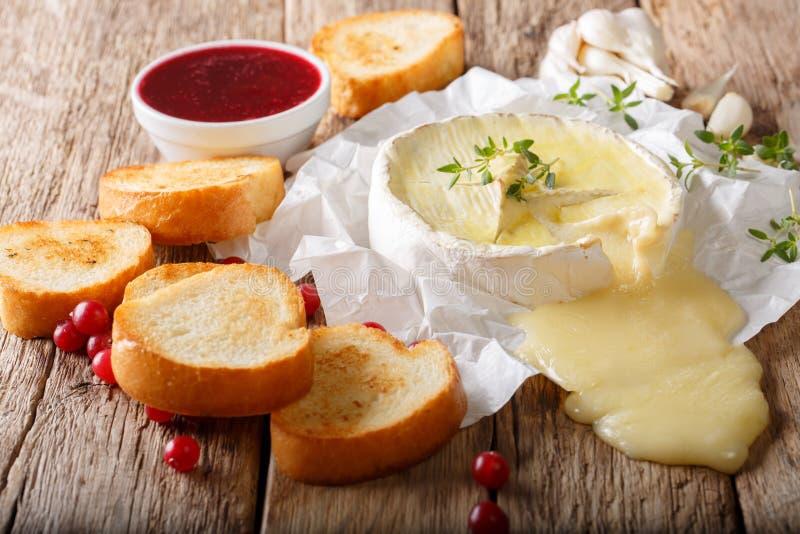 Fransk traditionell matcamembertost med vitlök, timjan är s royaltyfria foton