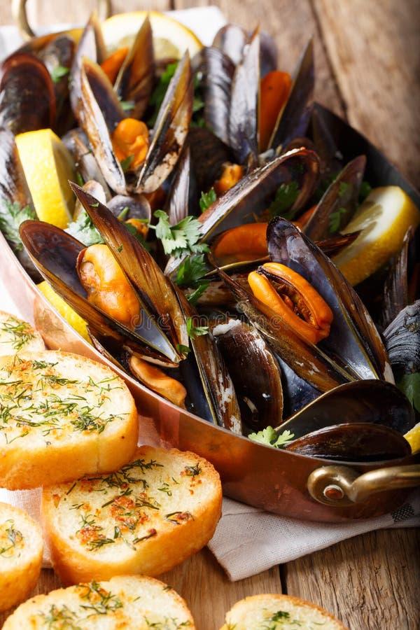 Franska havs- musslor med citron-, persilja- och vitlöknärbild I royaltyfria foton