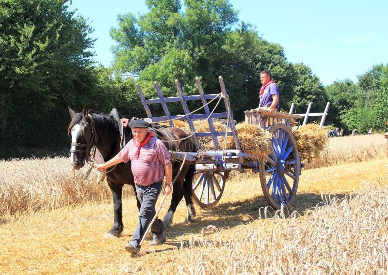 Franska män och häst- och hövagn arkivbilder