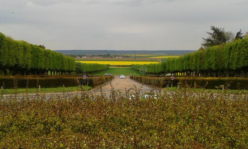 Franskaträdgård arkivfoton