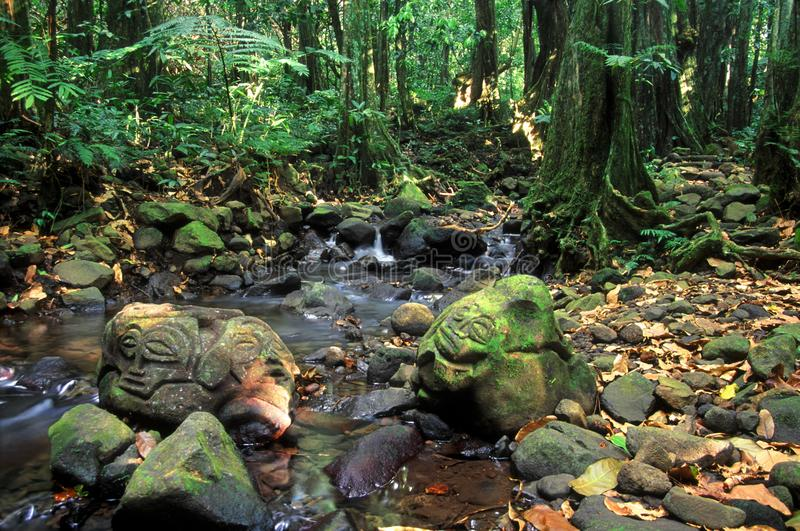 Französisch-Polynesien-Regenwald-Felsritzungen stockfotos