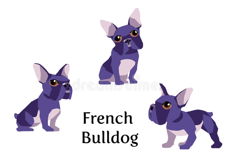 Französische Bulldogge vektor abbildung