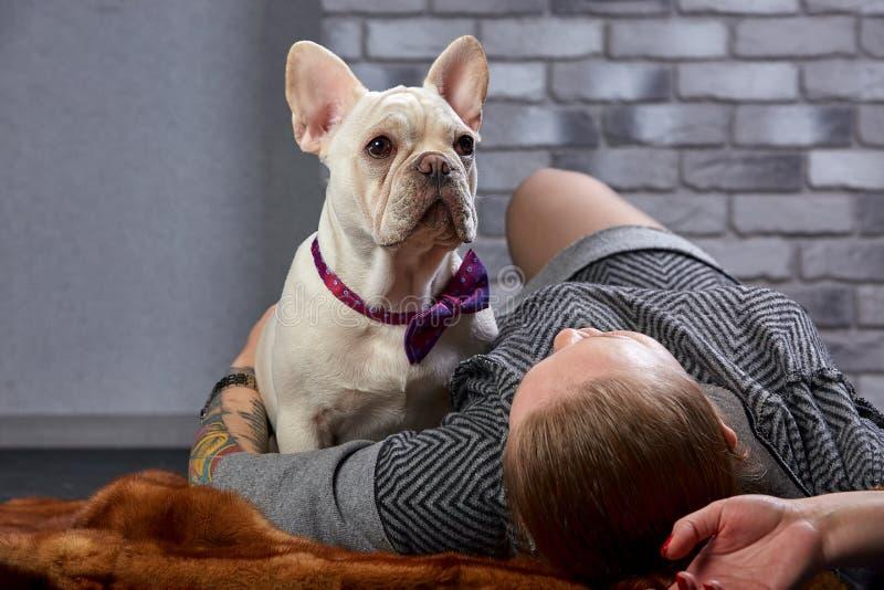 Französische Bulldogge auf den Händen seines Meisters Es wird geglaubt, dass das Mädchen ihr Haustier und Umarmungen liebt und ih stockbild