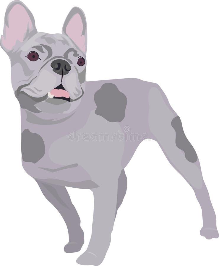 gezeichnete skizze der französischen bulldogge hand