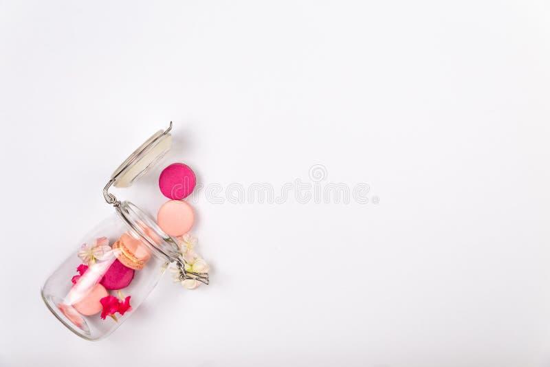 Französische rosa Makronen, Kirschblumen und rosa Inkarnationsblumenblätter, die aus einem Glasgefäß auf einem weißen Hintergrund lizenzfreie stockbilder