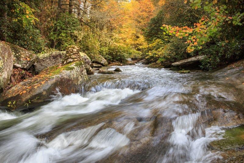 Französischer breiter Fluss Autumn North Carolina Stream stockbild