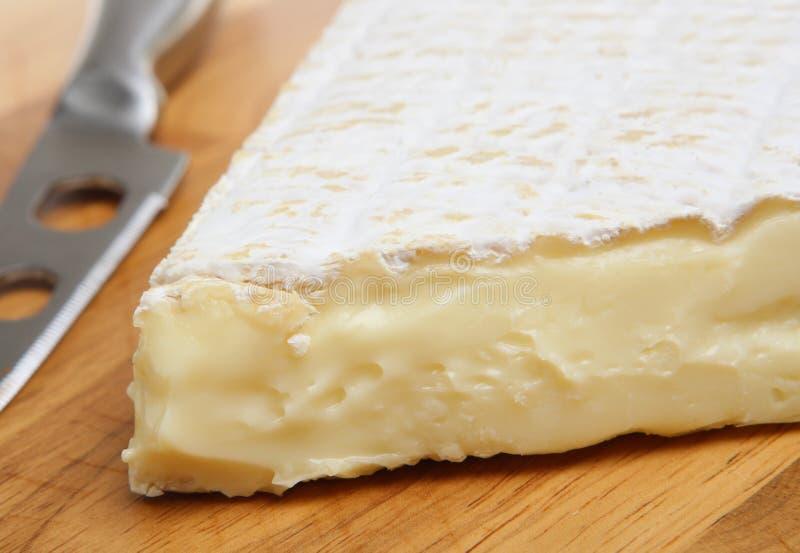 Französischer Briekäse-Käse stockbilder