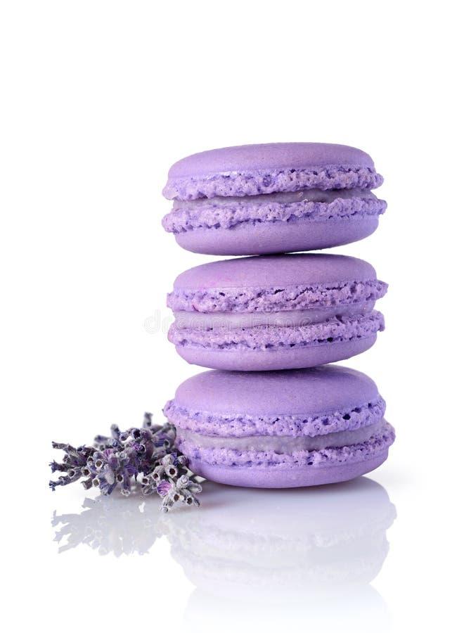 Französischer Schokoladenfondantpudding Süße lila Makronen oder macarons mit Lavendelaroma und -blume stockfoto
