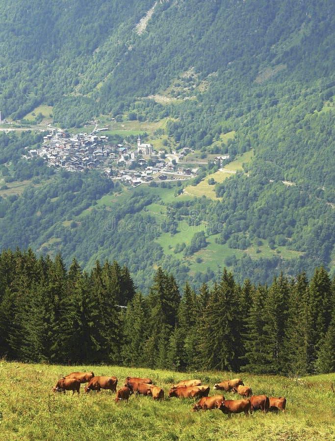 Französisches alpines Dorf stockbilder