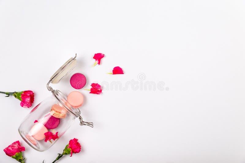 Französisches Rosa und magentarote Makronen, rosa Inkarnationsblumen, die aus einem Glasgefäß auf einem weißen Hintergrund mit Ko lizenzfreie stockfotos