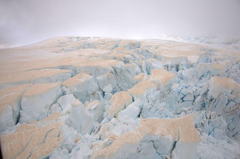 Franz Josef Glacier arkivbild