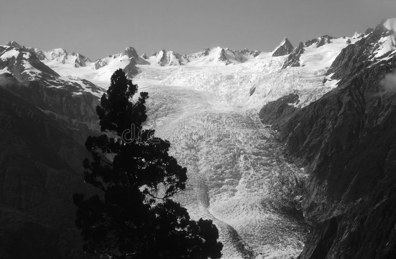 Franz Josef Glacier. Westland National Park, New Zealand royalty free stock image