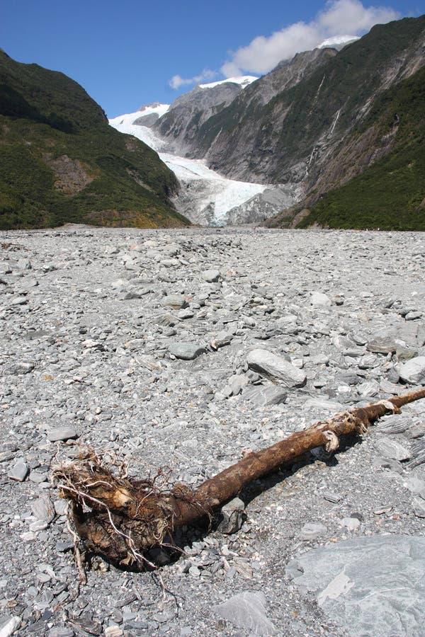 franz josef New Zealand fotografering för bildbyråer