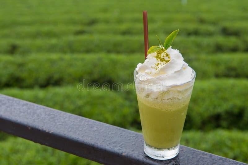 Frappe för grönt te royaltyfri bild