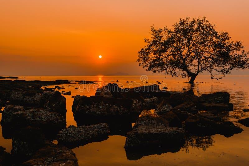 Frappez le sai, Sikao, Trang, Thaïlande photographie stock libre de droits
