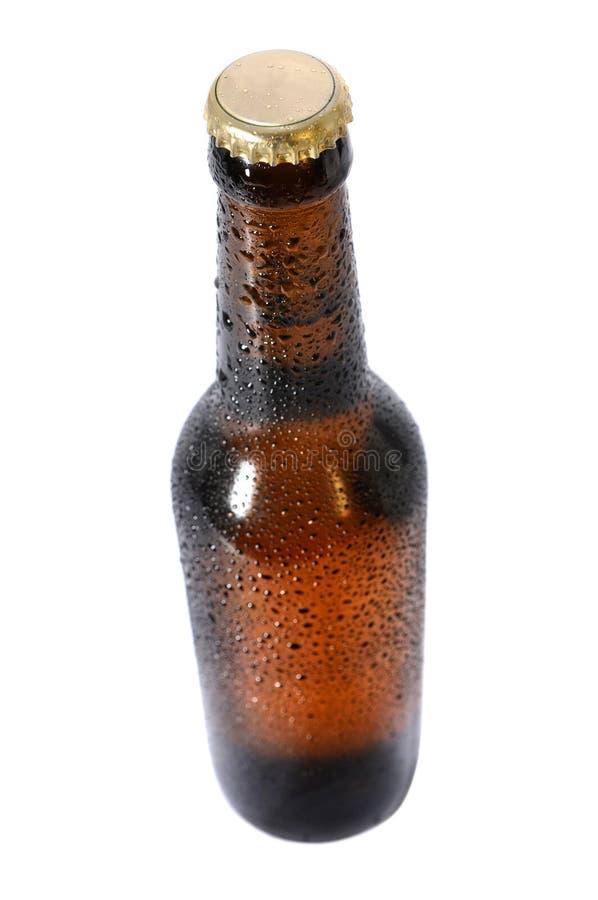 Frasco de cerveja fria foto de stock royalty free
