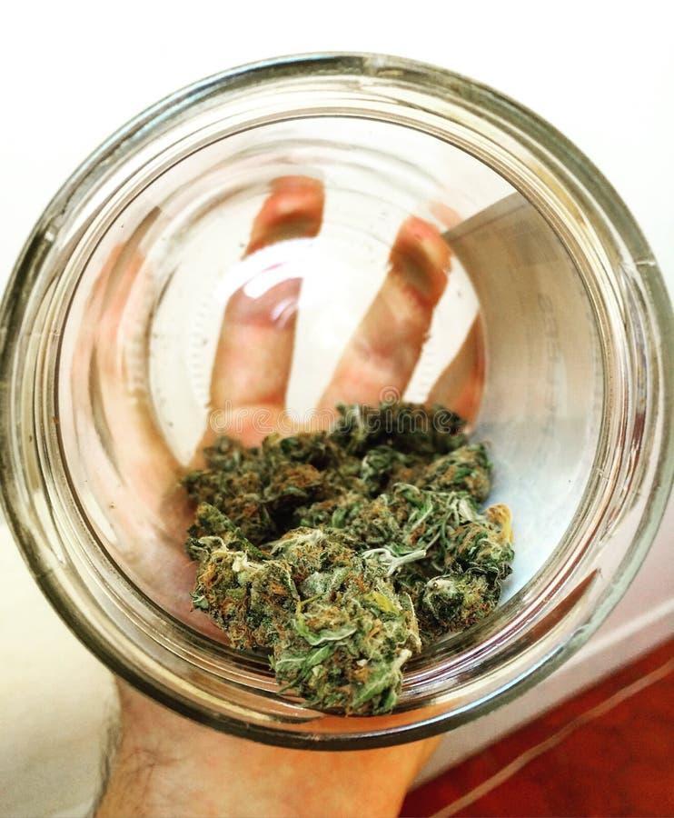 Frasco do cannabis imagens de stock royalty free