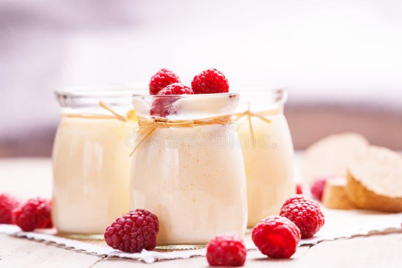 Frascos com iogurte e framboesas fotos de stock royalty free