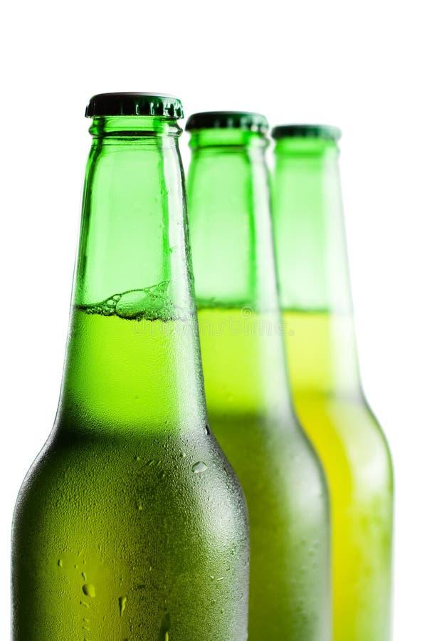 Frascos de cerveja verdes isolados sobre o branco fotos de stock royalty free