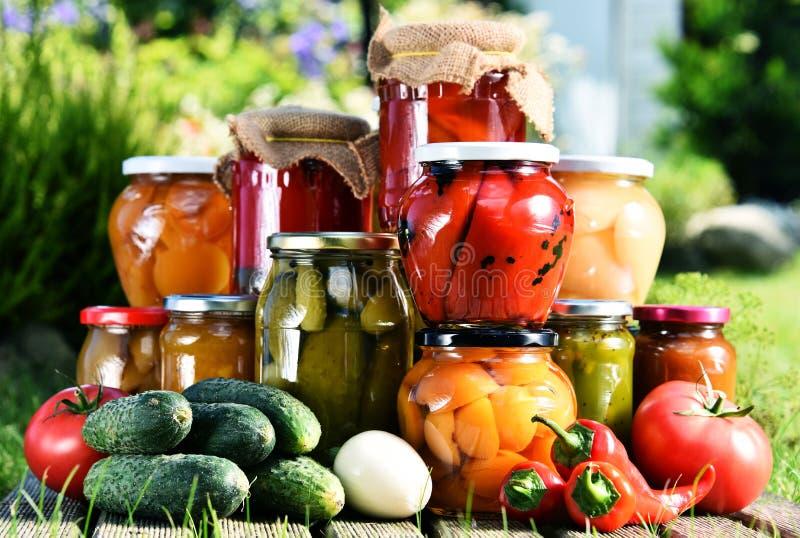 Frascos de vegetais e de frutos conservados no jardim imagens de stock royalty free
