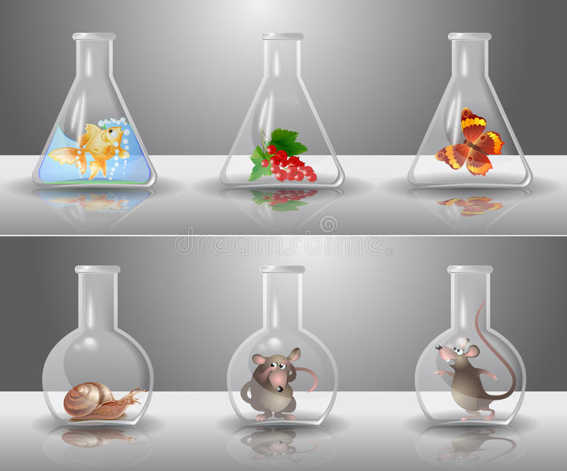 Frascos del laboratorio stock de ilustración