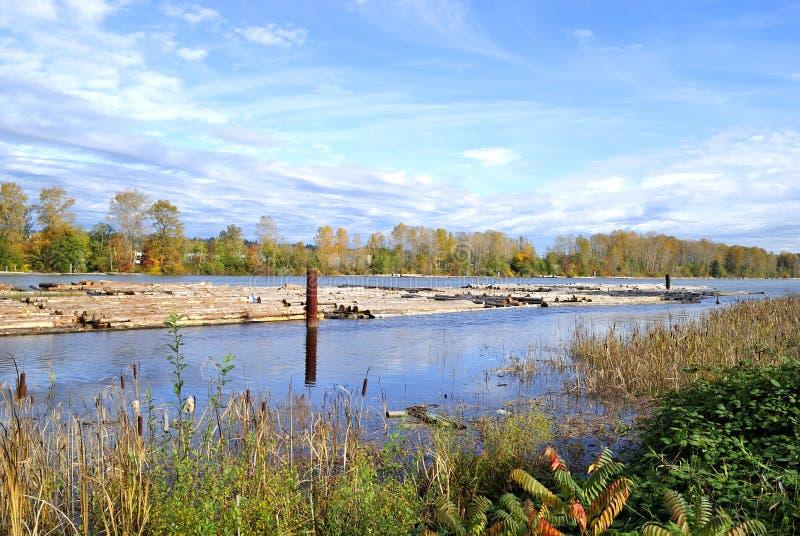 Fraser Fluss-Herbstansicht stockbild