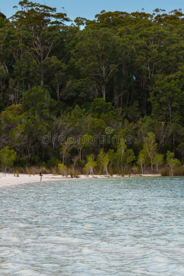Prince Harry stands alone at the edge of Lake Mackenzie royalty free stock photos
