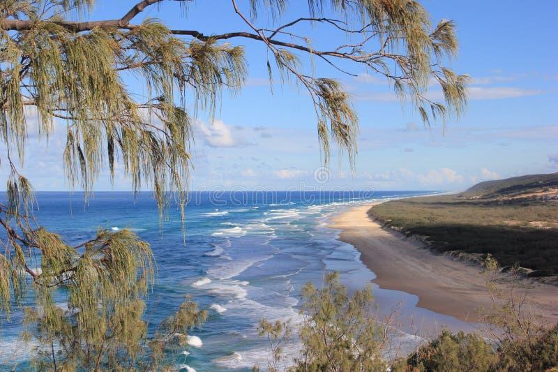 Fraser Island. Ocean view, Fraser Island, Queensland, Australia stock images