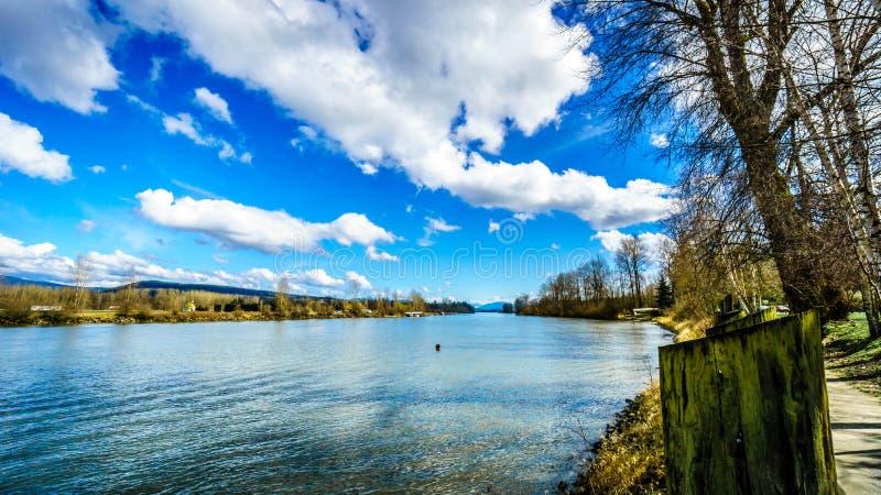 Fraser River bij Fort Langley, Brits Colombia stock afbeelding