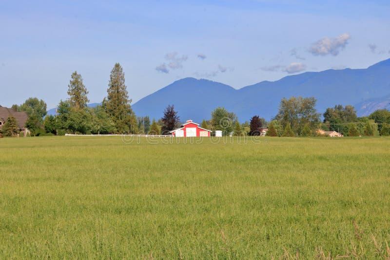 Fraser Valley Grassland en A.C. Canadá fotografía de archivo libre de regalías