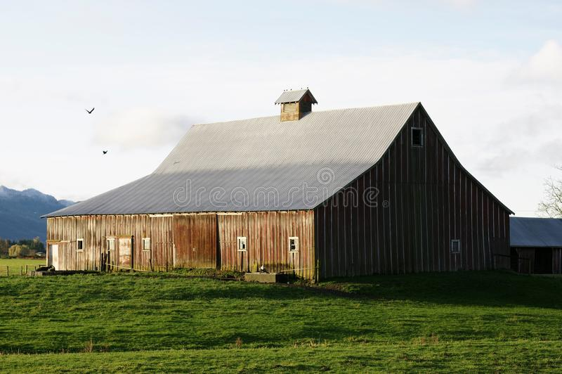 Fraser Valley Red Barn royalty free stock photography
