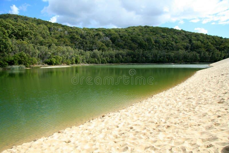 fraser wabby海岛的湖 图库摄影