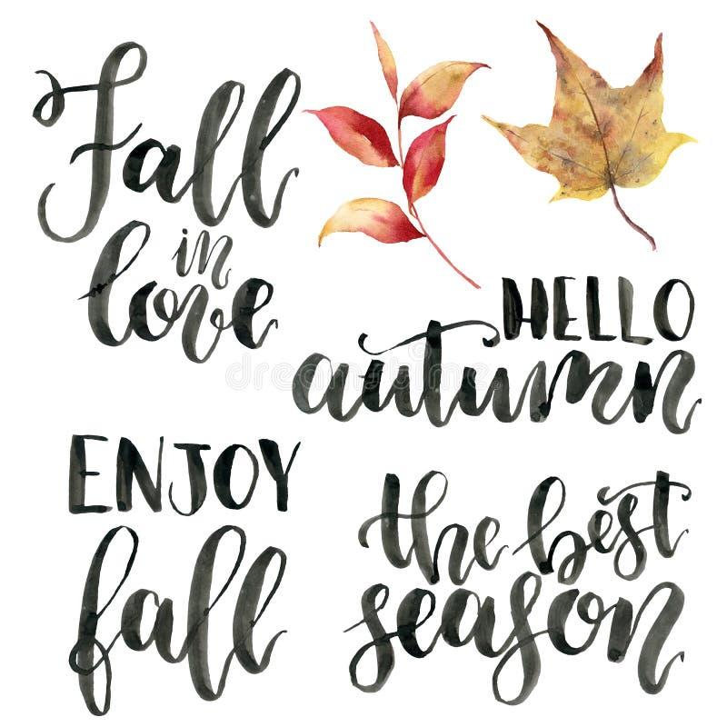 Frases da rotulação do outono da aquarela Grupo pintado à mão do calygraphy Cai no amor, olá! o outono, aprecia a queda, o melhor ilustração do vetor