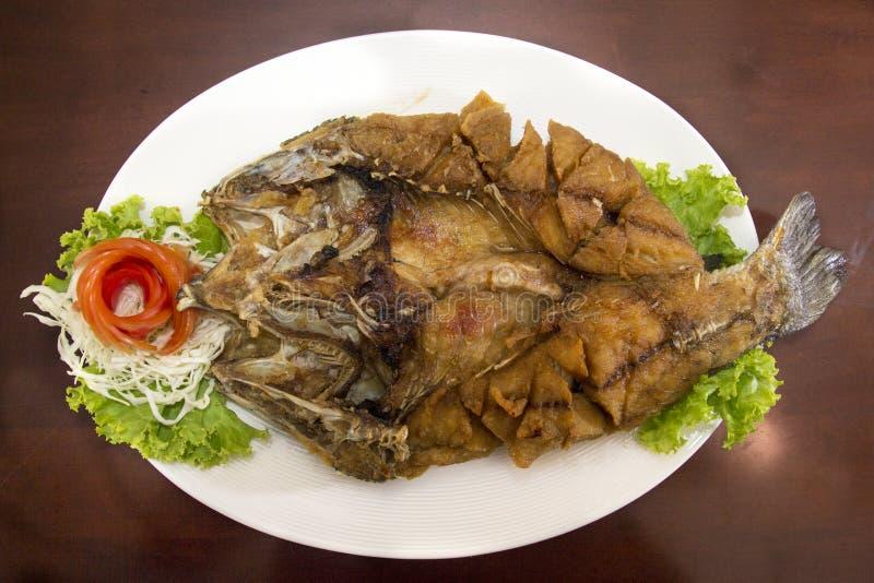 Frasig fisk arkivfoto