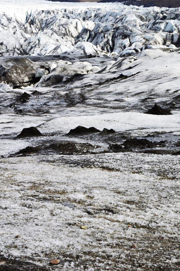 Frasig glaciär royaltyfri foto