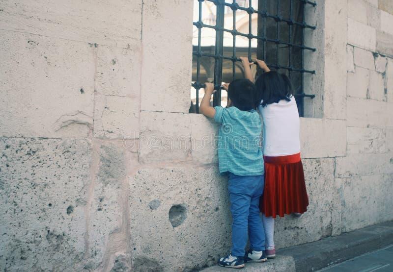 Fratelli germani che guardano attraverso una finestra immagine stock libera da diritti