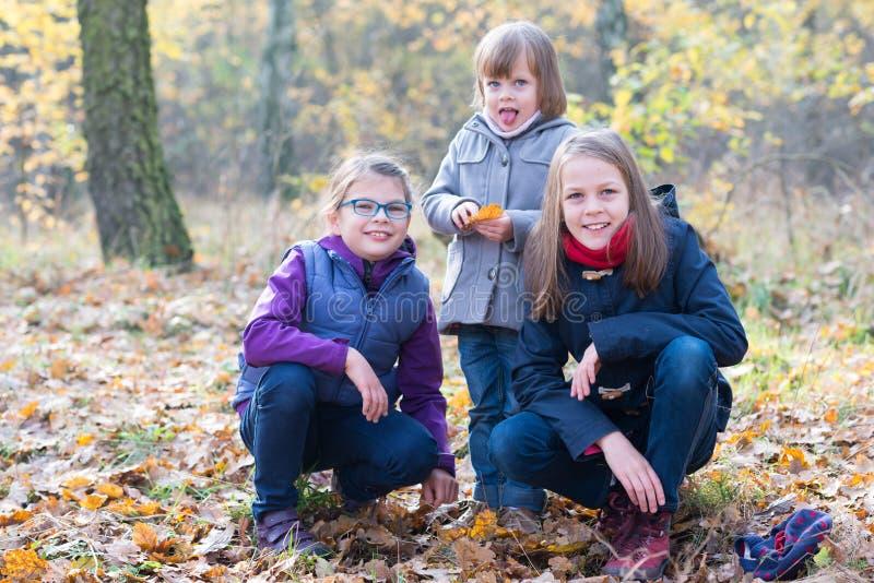 Fratelli germani felici - tre sorelle nel sorridere autunnale della foresta immagine stock