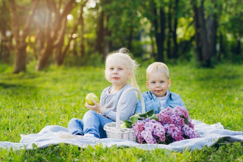 Fratello e sorella che si siedono sul prato di estate fotografie stock libere da diritti