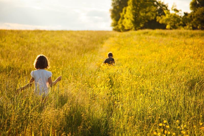 Fratello e sorella in un campo fotografia stock