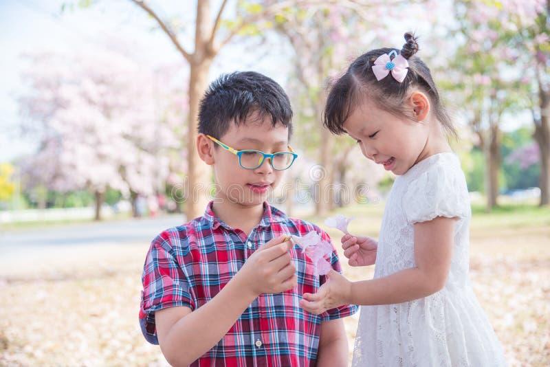 Fratello germano che gioca con il fiore in parco fotografie stock